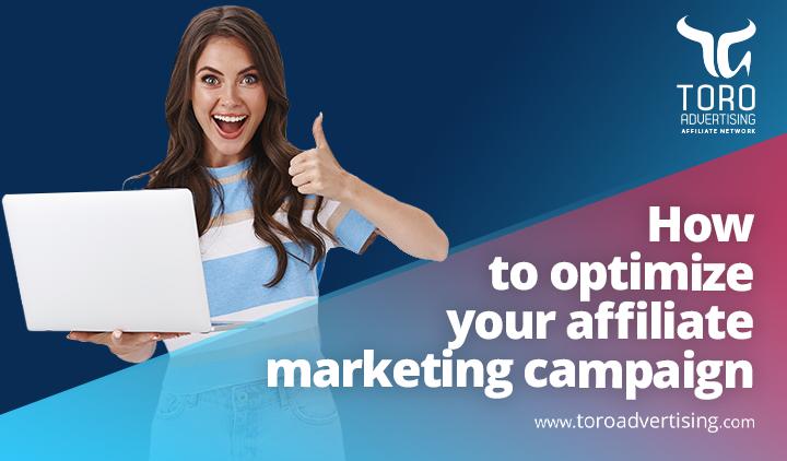 Optimize affiliate marketing campaign